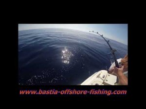Bastia Offshore Fishing
